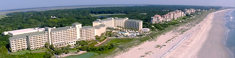 best thing to do on amelia island