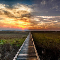 amelia island photography florida