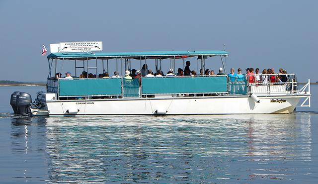 amelia river cruises amelia island florida cruise