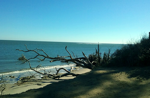 little talbot island florida