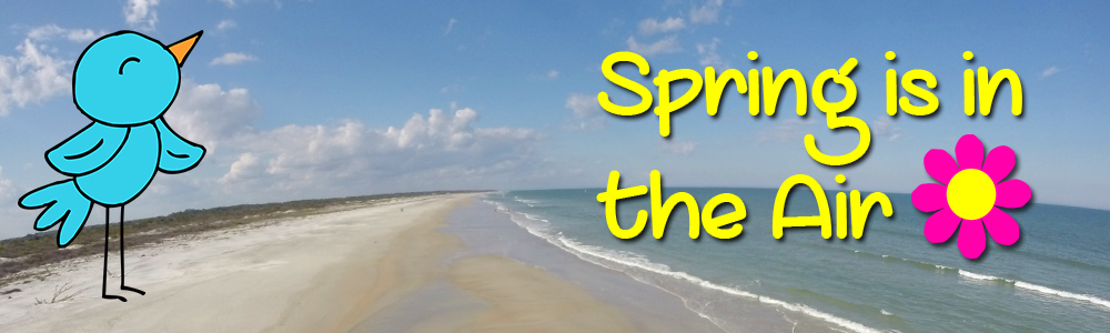 spring is in the air sale florida adventure sports