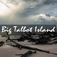 big talbot island florida tourism