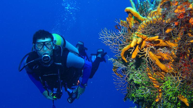 best adventure sports adventure sports scuba diving