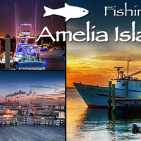 fishing on amelia island florida tourism